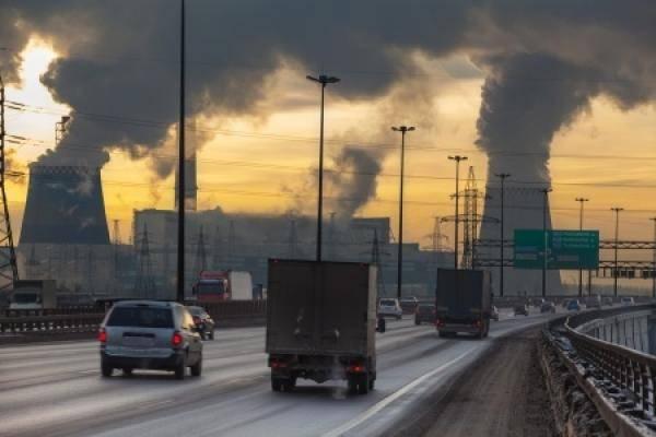 Risultati immagini per Tutti i danni del traffico veicolare
